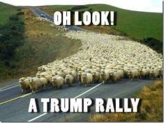 look-trump-rally[1]